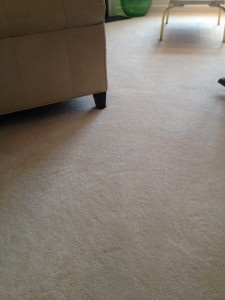 Professional Carpet Cleaning Hartford Ct