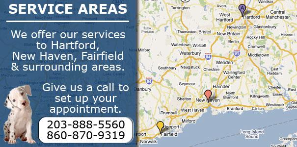 Service Area Prs Of Connecticut Pcs Of Connecticut