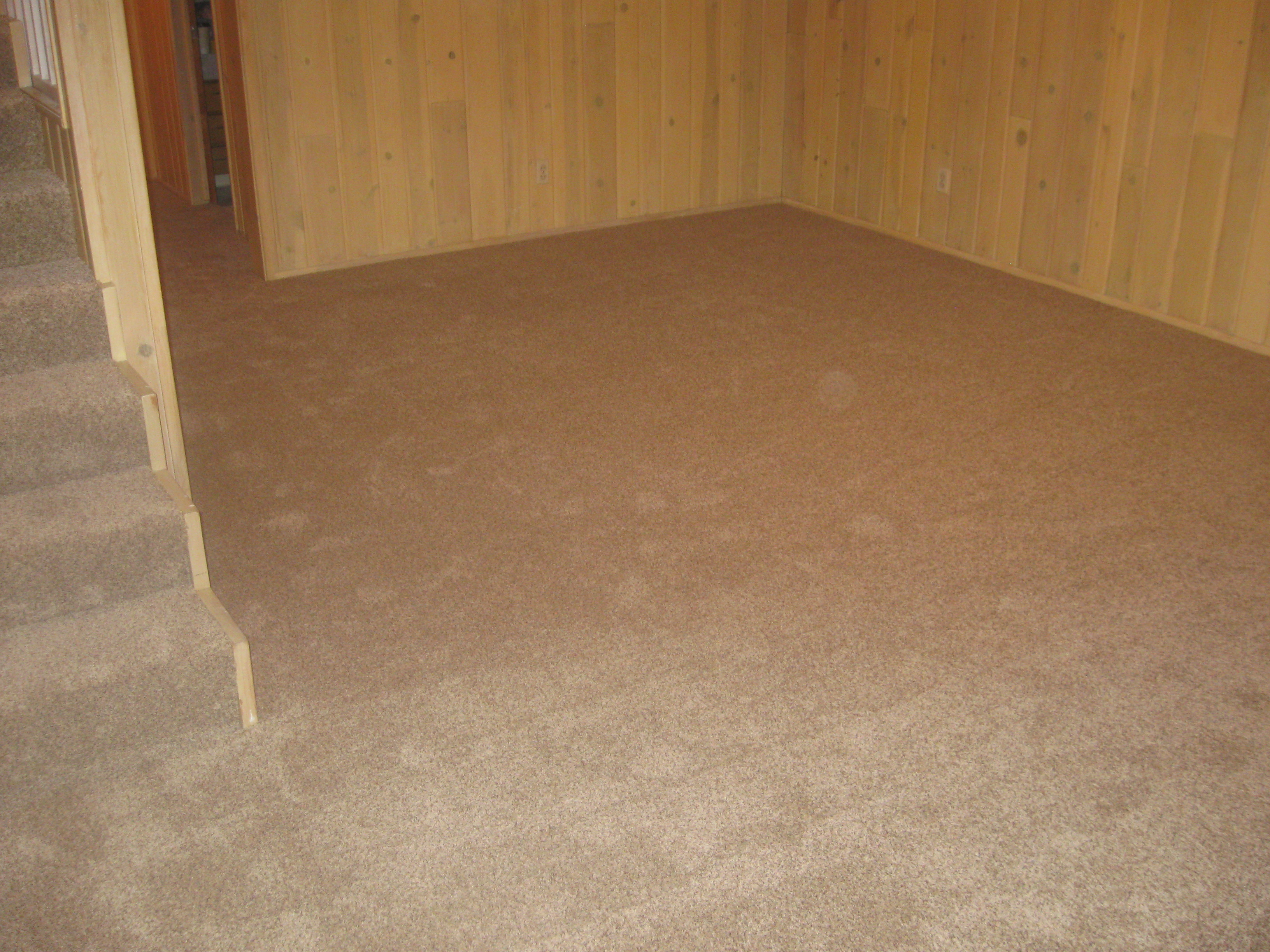 Professional Carpet Cleaning in Hartford