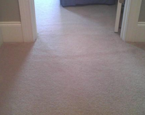 After Carpet Repair