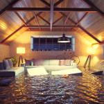 flood damage seymour