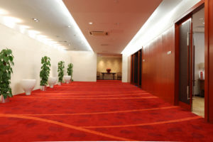 carpet cleaning derby ct