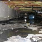 sewage damage