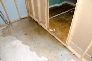 sewage cleanup derby ct, sewage cleanup derby