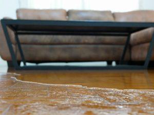 water damage seymour ct, water damage restoration seymour ct, water damage repair seymour ct, water damage cleanup seymour ct